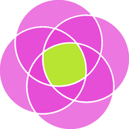 Camellia Digital Agency, Bristol TN