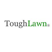 ToughLawn.com Artificial Grass, Austin TX