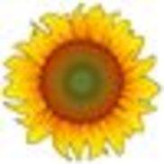 sunnyside collaborative care, Happy Valley OR