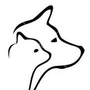 Pet Concierge Tampa Bay Pet Sitting and Dog Walking, Seminole FL
