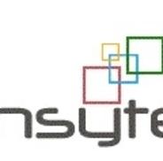 Insyte Consultancy Services, Oak Park IL