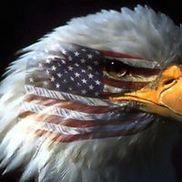 Bald Eagle American Boutique, LLC, Malverne NY