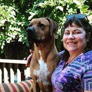Paw Prints Pet Care, Fremont CA