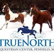 TrueNorth Equestrian Center, Penfield NY