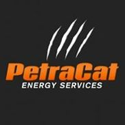Petracat Energy Services, Spring TX