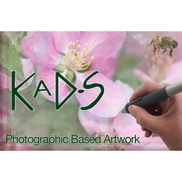 Karen A Dombrowski-Sobel -Photographic Based Art. , Boulder CO