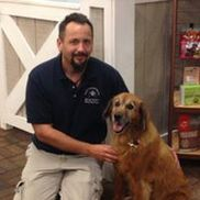 Tucker's Touch Canine Massage and Reiki, Colchester CT