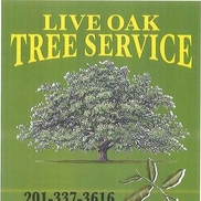 Live Oak Tree Service, Oakland NJ