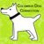 Columbus Dog Connection, Columbus OH