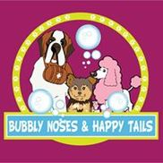 Bubbly noses and happy tails, Los Angeles CA