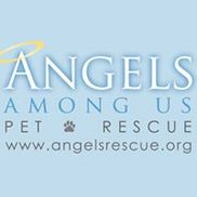 Angels Among Us Pet Rescue, Alpharetta GA