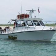 Monomoy Island Ferry and Seal Cruises, Chatham MA