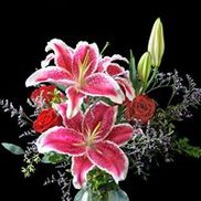 Judy's Central Point Florist, Central Point OR
