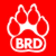 Big Red Dog Engineering, Austin TX
