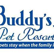 Buddy's Pet Resort at Scarlet's Mill, Birdsboro PA