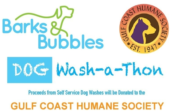 Barks and bubbles wash a thon by gulf coast humane society in fort pets du soleil mobile pet photographer will be onsite for this event after you pamer your pooch you can get photos done in their mobile photo studio solutioingenieria Images