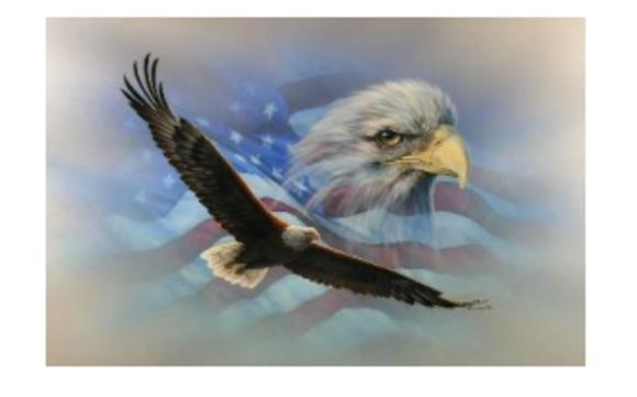1497981411 eagle flag