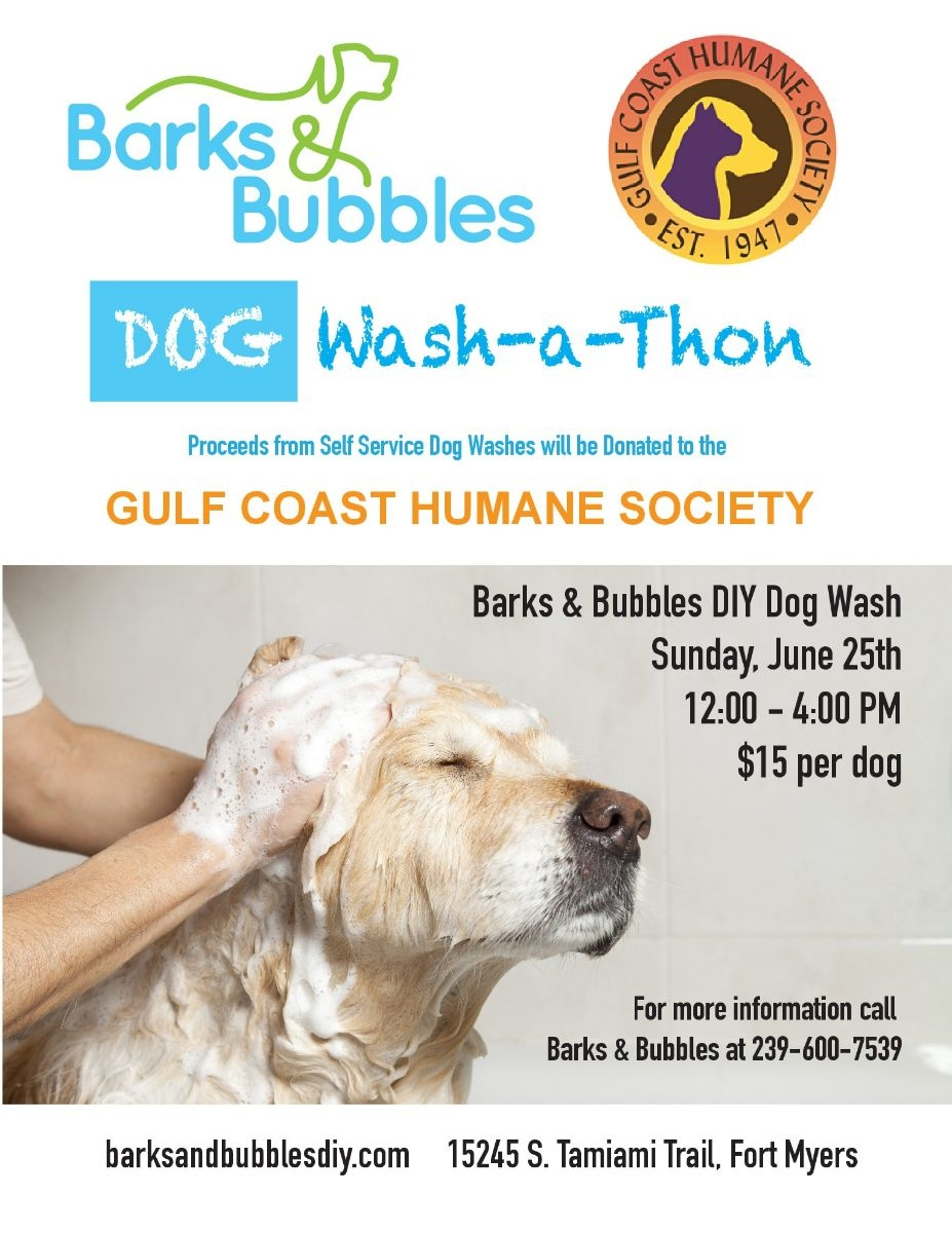 Barks and bubbles wash a thon by gulf coast humane society in fort barks and bubbles wash a thon by gulf coast humane society in fort myers fl alignable solutioingenieria Gallery