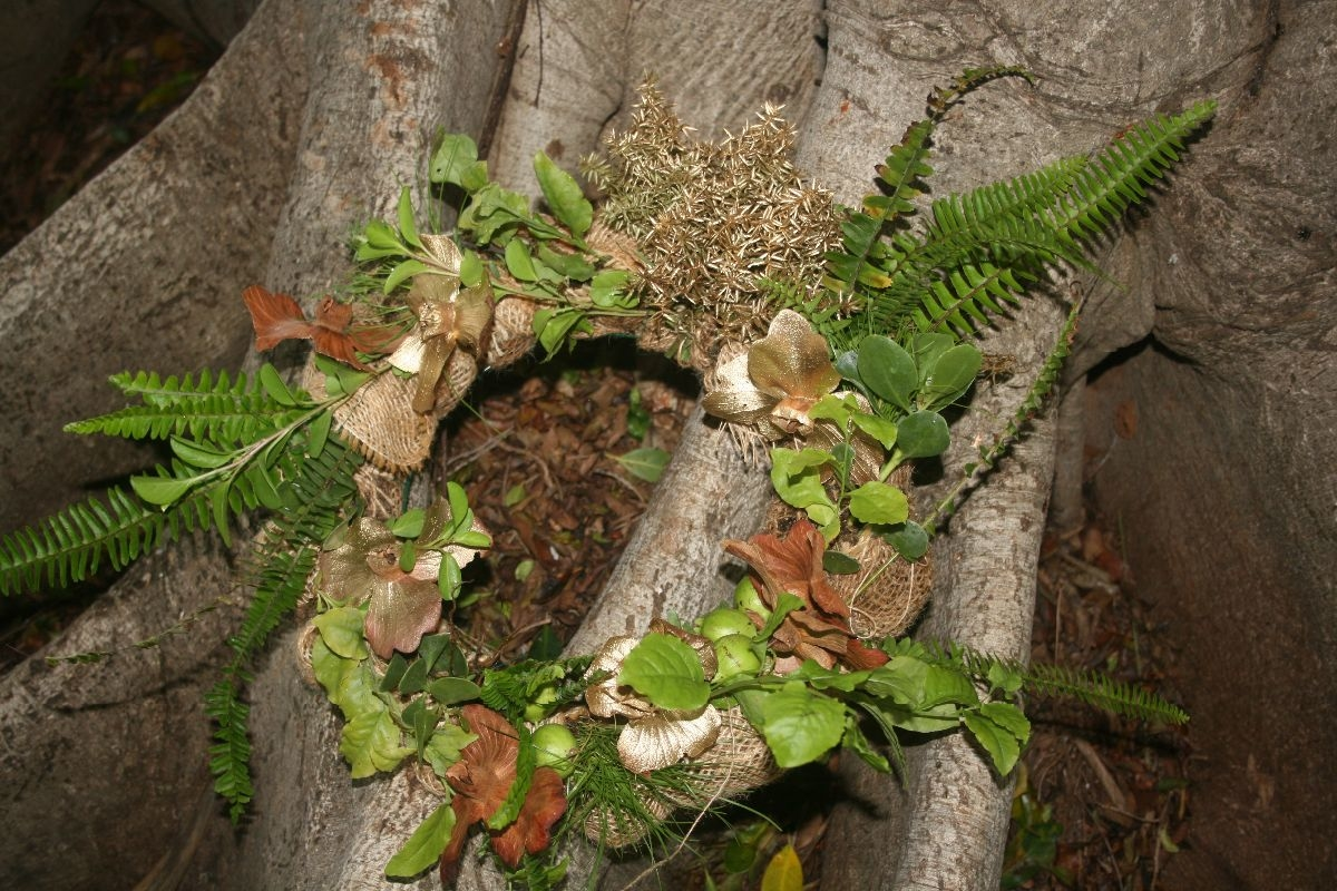 Living Wreath Making with Native Plants by Maui Nui Botanical ...