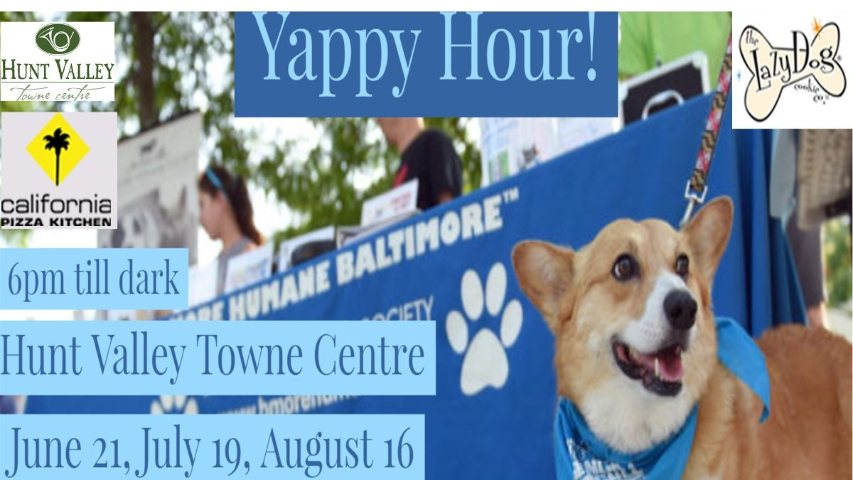 Yappy Hour! Vodka, Pups, & Cookies -- Vodka for you! Cookies for ...