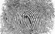 1401322522 fingerprint 2