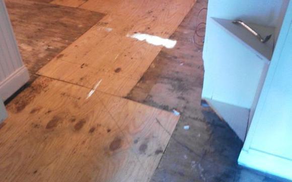 1483822362 sub flooring contractor repair replacement installation maintenance flooring wood tile vinyl linoleum eramic floating hardwood carpet handyman plumbing carpentry roof gutter