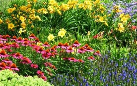 Froehlich\'s Farm & Garden Center - Furlong Area - Alignable