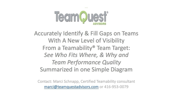 Team Target By Teamquest Advisors Executive Search Team Building