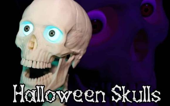 Contact Halloween Skulls