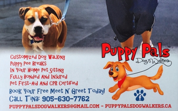 Puppy pals dog walkers by puppy pals dog walkers in waterdown area puppy pals offers fully customized dog walking and pet sitting sevices for each family we are fully bonded insured and pet first aid and cpr certified m4hsunfo Images
