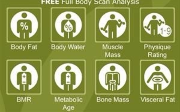 Free Body Composition Scan By Strive Studio Herbalife