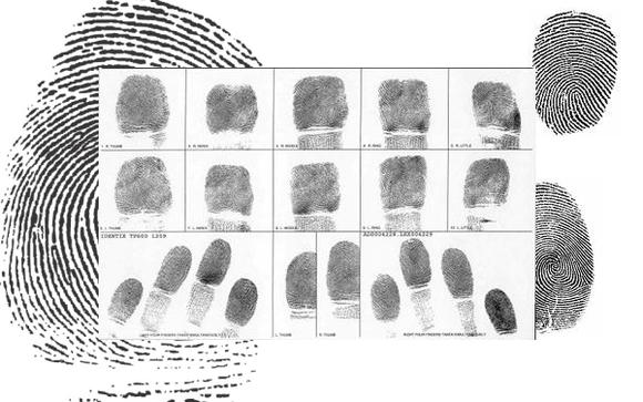 1456954403 fingerprints