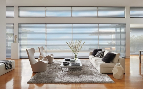 hunter douglas window blinds faux wood as hunter douglas dealer we carry the entire line of products the window blind and shade collection includes silhouette window blinds shades by mia home trends in fort