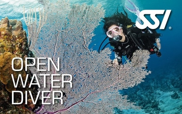 Open Water Diver Certification by Channel Islands Scuba in Thousand ...
