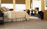 1445648585 carpet