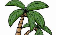 1445633732 palm tree logo with words