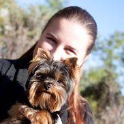 Natasha Borders from Bart & Gabriel Pet Sitting LLC