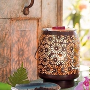 Karin Wilmarth from Karin Wilmarth-Independent Scentsy Consultant