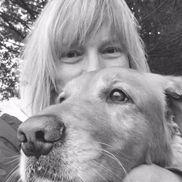 Chris Miller (Sewell-Goldm from Pet Sitter, Dog Walker Hampstead, MD Christine Miller