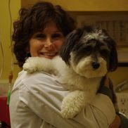 Wendy Bernstein, DVM from Critter Doctor Animal Hospital