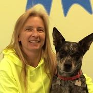 Nora Birt from Best Dog Ltd.