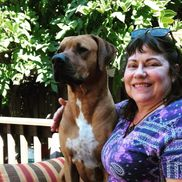 Jo Ellen  Haniford from Paw Prints Pet Care