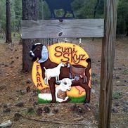 Suni Skyz Farm Goat Milk Soaps, Lotions & More, Brooksville FL