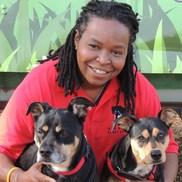 Robin Jackson from Sheba's Doggy Day Camp